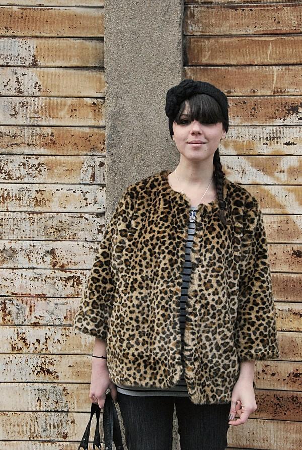leopard 0001