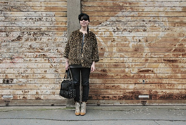 leopard 0002
