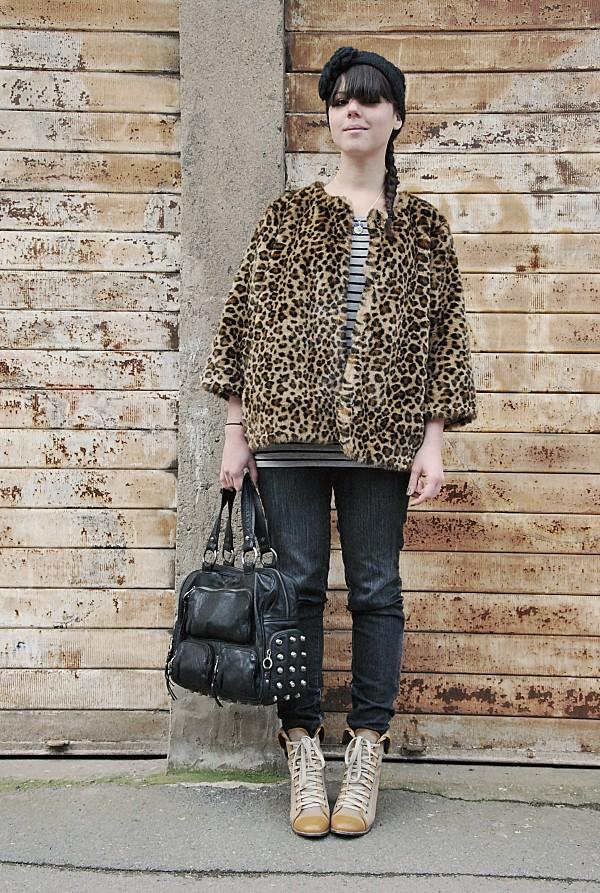 leopard 0006