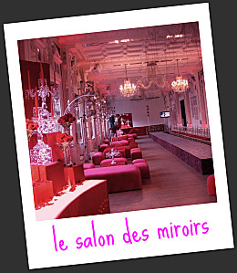 salon-miroirs2.jpg