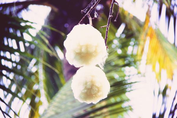 VOYAGE ILE MAURICE c paulinefashionblog.com  21 Carnet de voyage : l'Ile Maurice, le carnaval de Flic en Flac et la Mauritius Shopping Fiesta